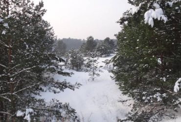 Zima, woj. kujawsko-pomorskie
